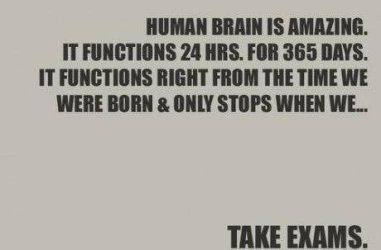 funny-pictures-auto-joke-brain-471300