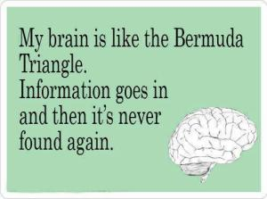 My-brain-is-like-the-Bermuda-triangle