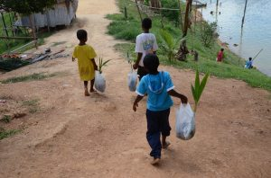 The Orang Asal children of Chuweh carrying fruit trees