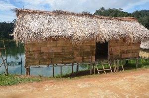 Four-star rainforest accommodation